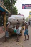 Les hommes de Thee déchargent les balles énormes de coton Photo stock