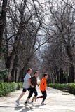 Les hommes espagnols courant dans Retiro stationnent à Madrid Espagne Photo libre de droits