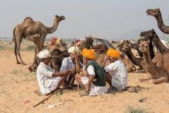 Les hommes indiens se sont occupés du chameau annuel Mela de Pushkar photo stock