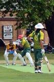 Les hommes jouent au cricket en parc de Victoria Auckland, Nouvelle-Zélande Photos stock