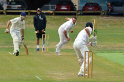 Les hommes jouent au cricket en parc de Victoria Auckland, Nouvelle-Zélande Image stock