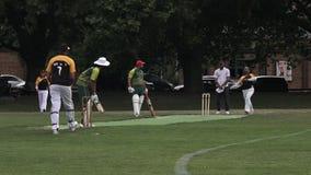 Les hommes jouent au cricket en parc de Victoria Auckland, Nouvelle-Zélande banque de vidéos