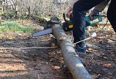 Les hommes sciaient le bois utilisant une scie verte électrique Photographie stock