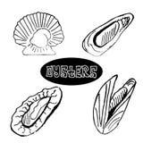 Les huîtres et les festons réglés de fruits de mer de croquis illustration stock