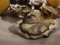 les huîtres vraies de plat avec le citron 1 Photo libre de droits