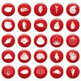 Les icônes de coquille de mer ont placé le vetor rouge illustration libre de droits