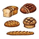 Les icônes de couleur de pain de croquis de vecteur de la boulangerie font des emplettes illustration de vecteur