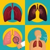 Les icônes de respiration humaines d'organe de poumon ont placé le style plat illustration de vecteur