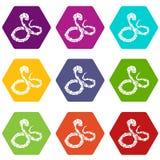 Les icônes de serpent de boa ont placé le vecteur 9 Image libre de droits