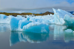 Les icebergs et les banquises bleus Photographie stock libre de droits