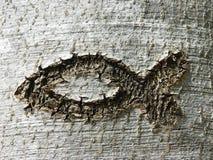 Les ichthys chrétiens de symbole pêchent, rayé dans une écorce d'arbre Photographie stock libre de droits