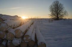 Les identifiez-vous la neige photographie stock