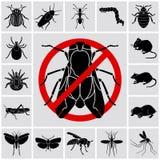 Les insectes et les parasites ont détaillé des icônes réglées illustration stock