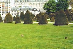 Les Invalides - van de stadsgangen van Parijs Frankrijk de reisspruit Stock Afbeelding