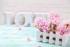 Les jacinthes roses et le mot en bois aiment sur le backgr en bois de turquoise Photos stock