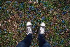 Les jambes adolescentes dans des espadrilles le printemps ont rectifié avec les fleurs bleues Photographie stock libre de droits