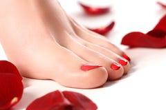 Les jambes de la femme en bonne santé pattes d'isolement blanches Belle femme le photographie stock libre de droits