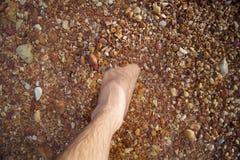 Les jambes et les pieds se sont noyés dans la pierre de rouge de mer Image libre de droits