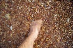 Les jambes et les pieds se sont noyés dans la pierre de rouge de mer Images libres de droits