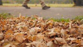 Les jambes masculines marchent le long du trottoir Plan rapproché Mouvement lent banque de vidéos