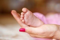Les jambes nouveau-nées dans des mains douces de mère Images stock