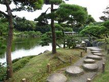 Les Japonais traditionnels flânent le jardin avec les pins noirs japonais Photo libre de droits