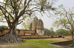 Les jardiniers nettoient le secteur autour des arbres et du temple antiques en Thaïlande images stock