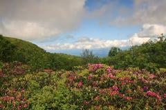 Les jardins rocailleux d'horizontal donnent sur BRP OR image stock