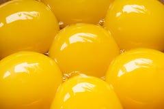 Les jaunes d'oeuf se ferment  Photo stock