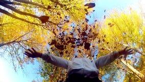 Les jets de femme tombent des feuilles dans l'air banque de vidéos