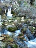 Les jets de la rivière du monde en sierra De Alcaraz Photographie stock libre de droits