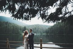 Les jeunes épousent nouvellement des couples, baisers de jeunes mariés, étreignant sur la vue parfaite des montagnes, ciel bleu Images libres de droits