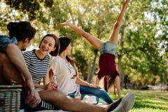 Les jeunes appréciant le pique-nique en parc Photos libres de droits