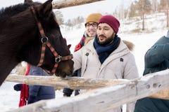 Les jeunes choyant des chevaux sur le ranch Photo libre de droits