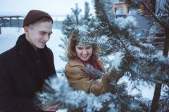 Les jeunes couples dans des branches de pin ont couvert la neige Amie et ami appréciant des vacances heureuses de jour du ` s de  Photos libres de droits