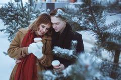 Les jeunes couples dans des branches de pin ont couvert la neige Amie et ami tenant deux tasses et embrassements de café chauds Photos stock
