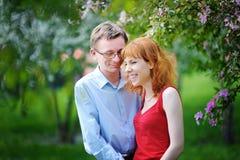 Les jeunes couples dans l'amour marchant au ressort se développant font du jardinage Photo stock