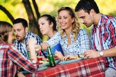 Les jeunes en nature ayant l'amusement et la partie de BBQ image stock