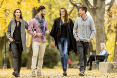 Les jeunes en parc d'automne Image stock
