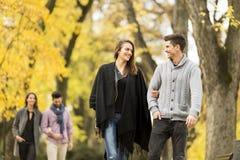 Les jeunes en parc d'automne Photographie stock