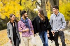 Les jeunes en parc d'automne Images stock