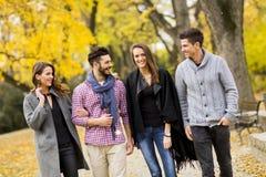 Les jeunes en parc d'automne Photos libres de droits