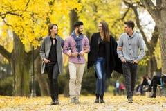 Les jeunes en parc d'automne Photos stock