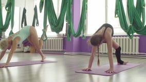 Les jeunes et d'une cinquantaine d'ann?es femmes ex?cutent synchroniquement l'asana de yoga banque de vidéos
