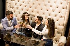Les jeunes grillant avec du vin blanc Photographie stock libre de droits