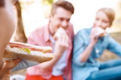 Les jeunes mangeant des sandwichs pendant le pique-nique images libres de droits