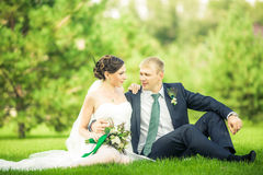 Les jeunes mariés Photos stock