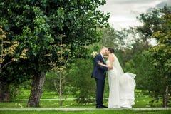 Les jeunes mariés Photo stock