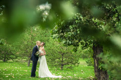 Les jeunes mariés Image libre de droits