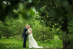 Les jeunes mariés Photo libre de droits